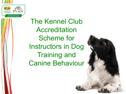 Kennel Club Accredited Instructors Scheme