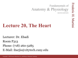 Lecture 20, The Heart - Websupport1