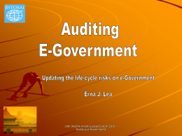 Auditing e-Government - National Audit Office