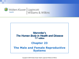 The Reproductive System: Male & Female
