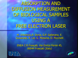 Absorption and diffusion measurements of biological samples using