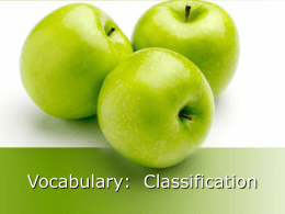 Vocabulary: Classification