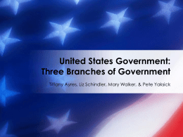 United States Government - Brain