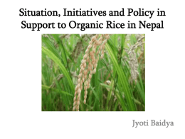 Organic Rice Industry in Nepal - Asian Farmers Association for
