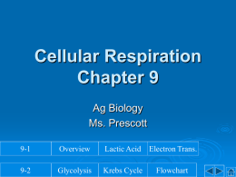 Cellular Respiration Notes - Ponderosa High School Agriculture