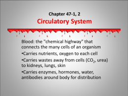 Chapter 47 - Circulatory and Respiratory Systems