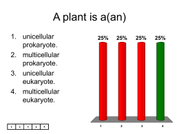 A plant is a(an)