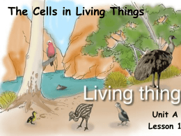 Unit A Ch1 L1 The Cells in Living Things