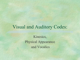 Visual and Auditory Codes: