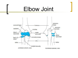 Elbow_Joint_chp_10