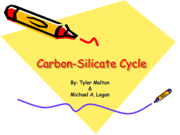 Carbon-Silicate Cycle