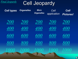 Cell Jeopardy Game