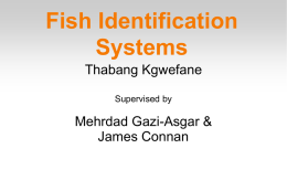 Fish Identification Systems