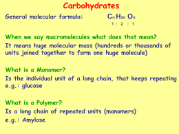 Carbohydrates (PowerPoint)