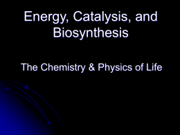 Energy, Catalysis, and Biosynthesis