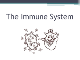 The Immune System - Ms. Lin`s Science Class