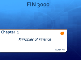 FIN 3000 Chapter 1 Principles of Finance