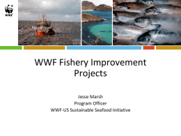 Fishery Improvement Projects