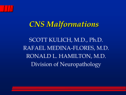 CNS Malformations - Division of Neuropathology