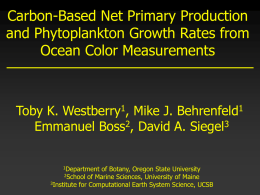 Carbon-Based Net Primary Production and Phytoplankton