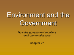 Environment in the Government