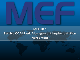 An Overview of the MEF