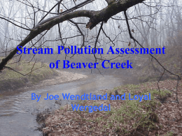 Stream Pollution Assessment of Beaver Creek