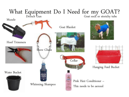 What Equipment Do I Need for my GOAT?