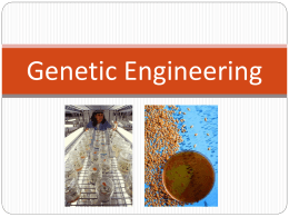 Genetic Engineering - Kent City School District