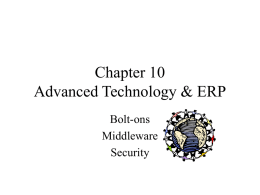 Chapter 10 Advanced Technology & ERP