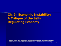 Economic Instability: A Critique of the Self