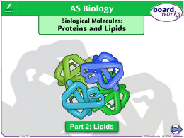 Biological Molecules: Proteins and Lipids