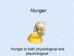Hunger - AP Psychology