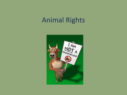 Animals and Persons