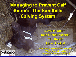 Infectious disease triad - Range Beef Cow Symposium XXII