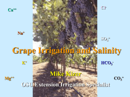 Salinity and Grape Irrigation