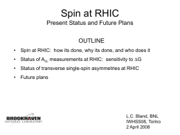 RHIC Spin Accomplishments, Plans and Issues