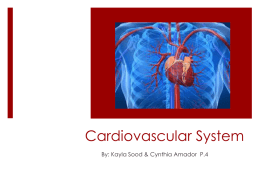 Cardiovascular System - Downey Unified School District