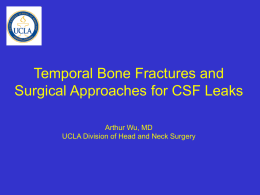PPT Temporal Bone Fractures - UCLA Head and Neck Surgery