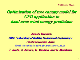 Optimization of tree canopy model for CFD application to