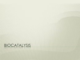 Biocatalysis - Chatham University