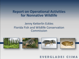 Overview of Everglades Invasive Species