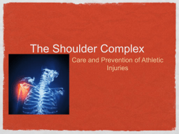 The Shoulder Complex - Doral Academy Preparatory