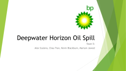 BP Project After Oil Spill