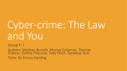 Cyber-crime: the law and you