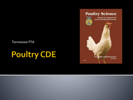 Poultry CDE - West Tennessee Region