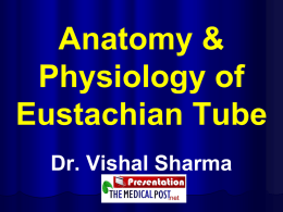 Anatomy & Physiology of Eustachian Tube