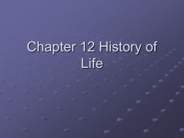 Chapter 12 History of Life