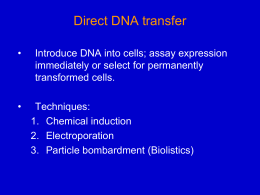 Direct DNA transfer - University of Texas at Austin