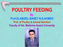 POULTRY FEEDING - Assiut University